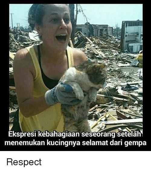 kucing gue gak mati gambar lucu